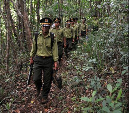 Kon Chư Răng - Tăng cường quản lý bảo vệ rừng