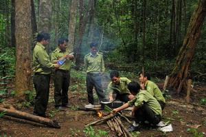 Phát huy hiệu quả công tác bảo vệ rừng